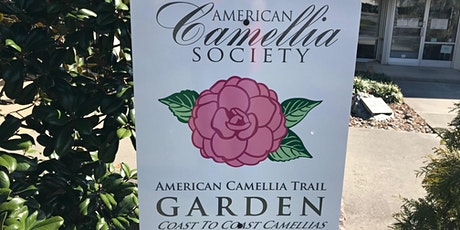 Camellia Trail Guided Walking Tour @ the NHC Arboretum tickets