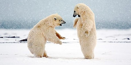 Polar Bear Power Yoga (Rock Creek Park Carter Barron Soccer Field off 16th) tickets