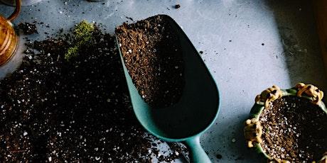 Oficina – Introdução ao Cultivo de Plantas, com Tiago Valente ingressos