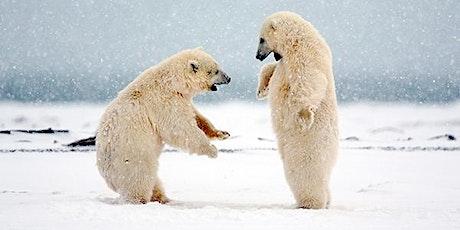 Polar Bear Power Yoga (Wangari Gardens) tickets