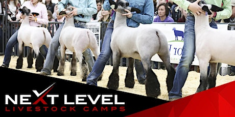 NEXT LEVEL SHOW SHEEP CAMP | May 22nd & 23rd | South Bend, Indiana tickets