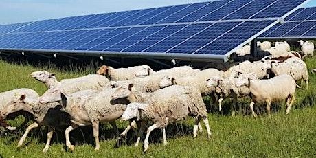West River  Solar Farm Virtual Open House tickets