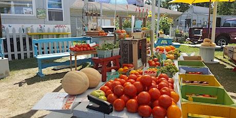 A Taste of Summer Kick off Event Craft Show- Farm Market Grand Open- tickets