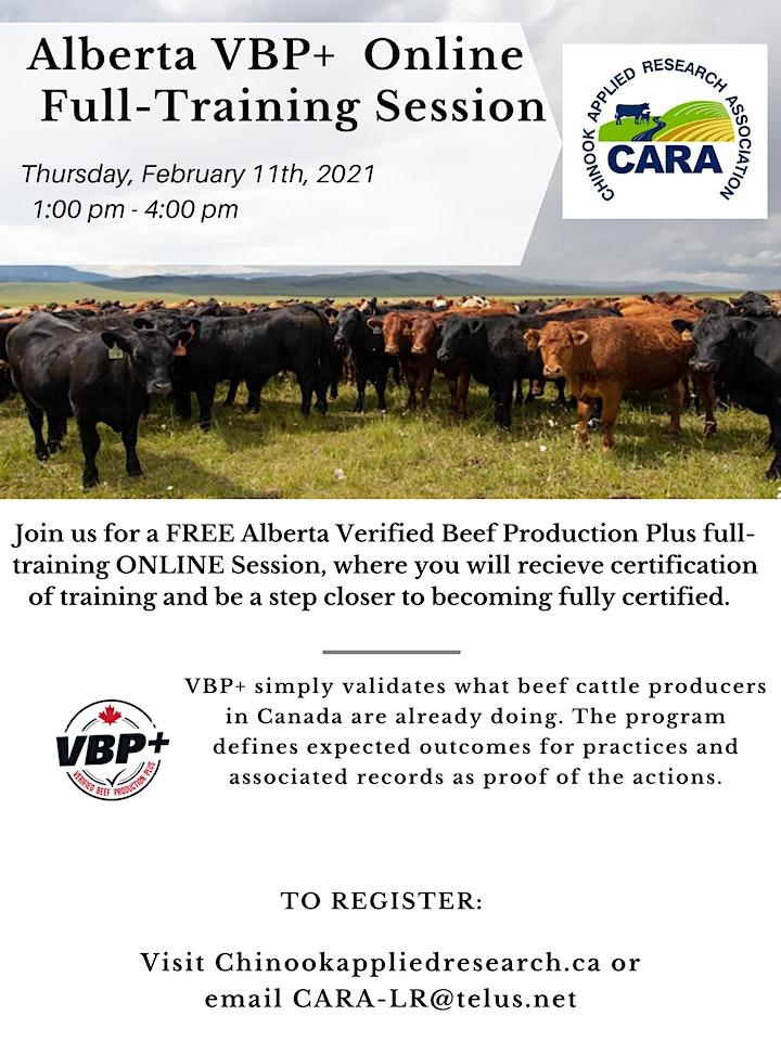 Alberta VBP+ Online Info & Full-Training Session image