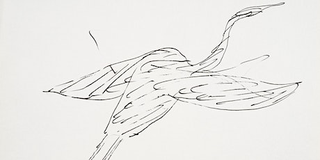 Virtual Workshop: Learn How to Draw a Bird tickets