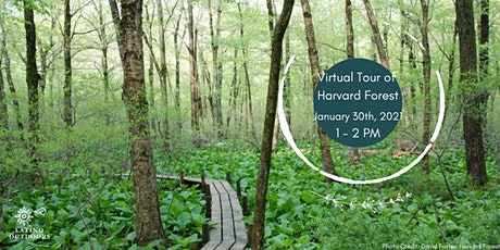 Virtual Tour of Harvard Research Forest with LO Western Massachusetts! tickets