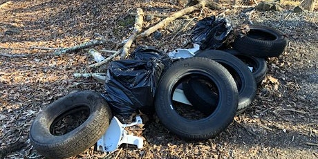 Cleanup at Twin Lakes Park tickets