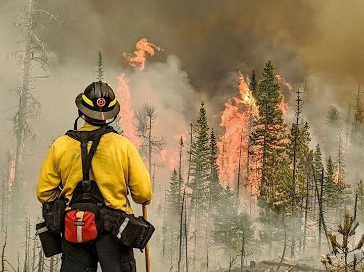 Colorado Wildfires 2020 Webinar Series image