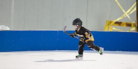 Wheaton Park District Hockey Skills & Drills Ice Rink - 1/31/2021 tickets