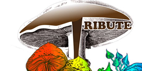 Tribute - A Celebration of the Allman Brothers' Band tickets