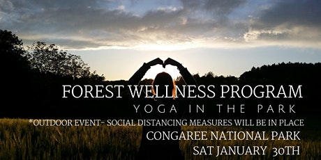 January Forest Wellness - Yoga in the Park tickets