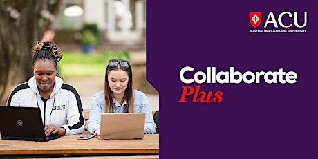 Launch Plus Incubator Program – Preparing the perfect pitch tickets