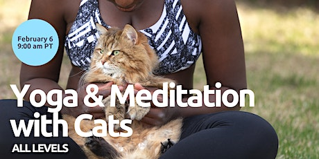 Yoga & Meditation with Cats - For All Levels tickets