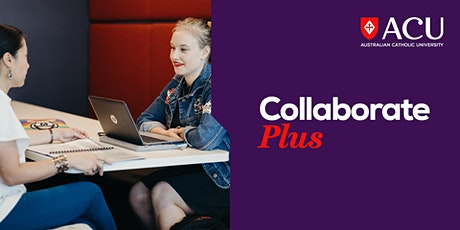 Launch Plus Incubator Program – Grant and tender writing tickets