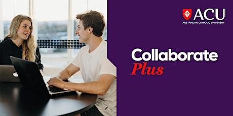 Launch Plus Incubator Program – Digital marketing tickets