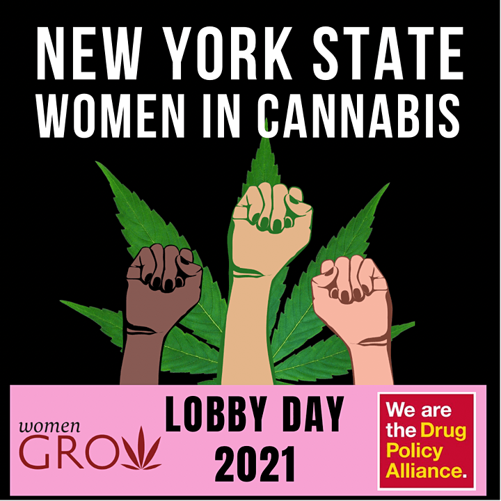 NYS Women in Cannabis Lobby Day image