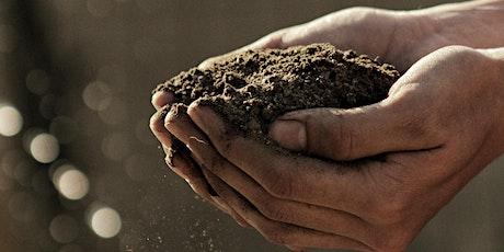 Love Your Soil - Online Gardening Workshop tickets