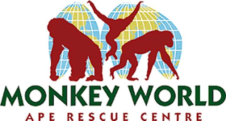 Monkey World with Annie image