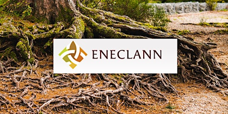 Family History and Genealogy talk with Fiona Fitzsimons & Eneclann - Part 4 tickets