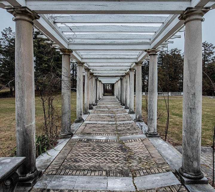The Majestic Swannanoa Palace Historical & Photography Tour image