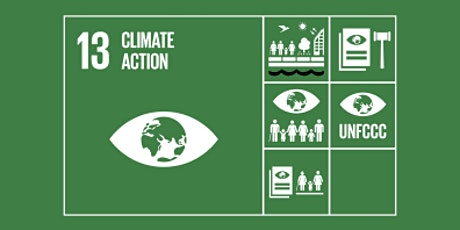 SDG 13: Climate Action Teacher CPD tickets