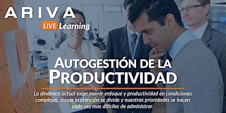 Autogestión de la Productividad entradas