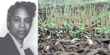 Celebrating Black Botanists: Marie Clark Taylor, Historic Woman of Botany tickets
