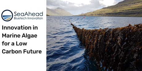 SeaAhead Webinar: Innovation in Marine Algae for a Low Carbon Future tickets