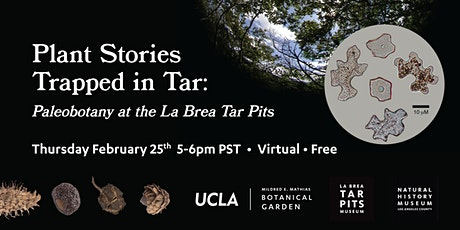 Plant Stories  Trapped in Tar:  Paleobotany at the La Brea Tar Pits tickets