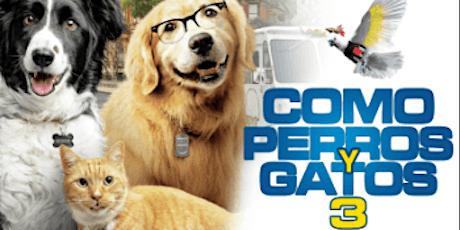 Como Perros y Gatos 3 entradas