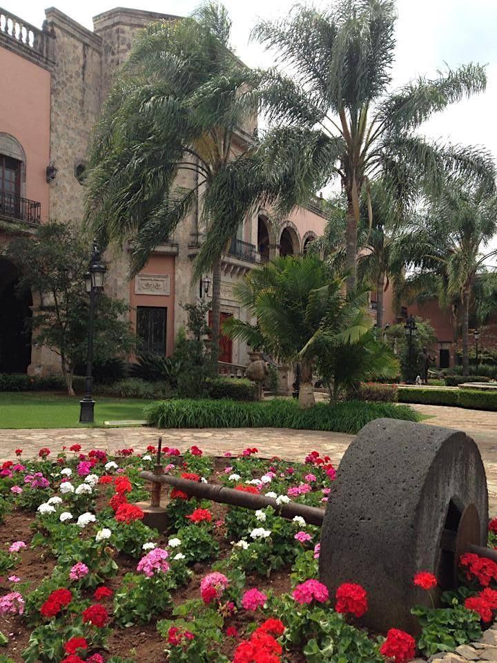 Lets Go to Mexico Part 4! Distilleries of Los Altos Tour Today! image