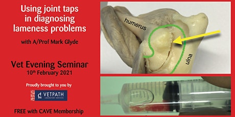 Using joint taps in diagnosing lameness problems - Evening Seminar for Vets tickets