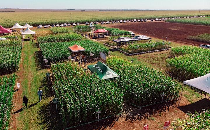 Imagem do evento II Encontro Tecnológico do Milho Safrinha Cropsolutions MS