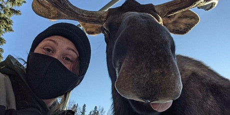 Meet a Moose and Cousins: A Deer Family Encounter tickets