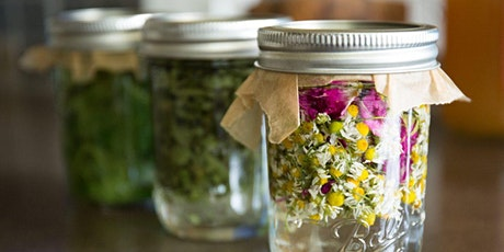 Herbal Remedies for Beginner's How to Make a Tincture tickets