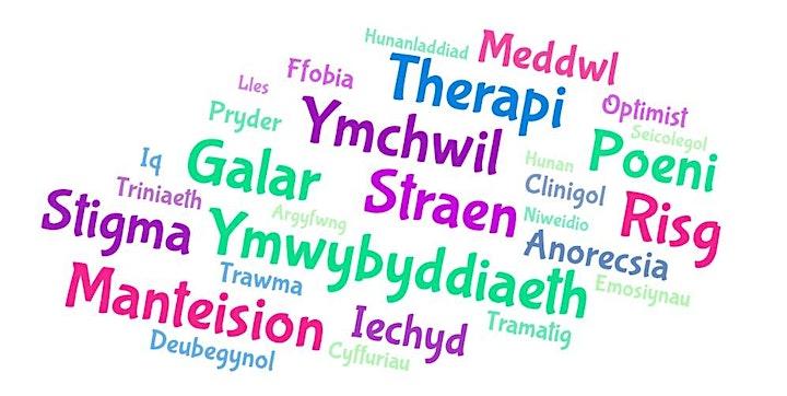 Cymorth Cyntaf Iechyd Meddwl (Cymraeg) image