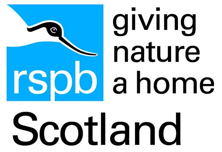 RSPB Wild Webinars (birds, mammals, gardening, community) image