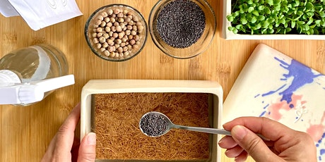 Farm Day Out Workshop: Microgreens Growing by UrbanSproutz tickets