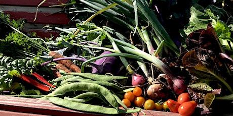 Embrace Gardening- Planning Your Edible Garden in 2021 tickets