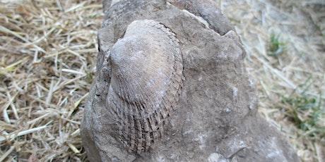 Jurassic Park Geology tickets