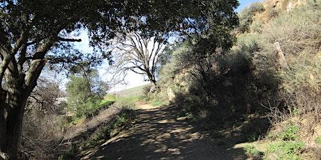 Pine Creek Loop Hike tickets