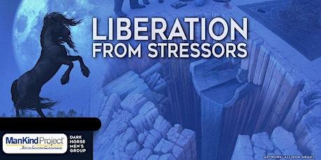 Liberation From Stressors: Dark Horse Men's Group Meeting Jan 27 tickets