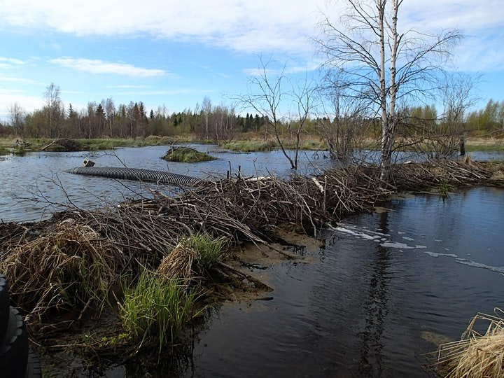Winter  Speaker Series - Exploring Riparian Stewardship and Regulations image