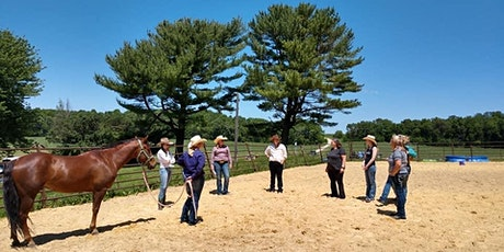 Equine Facilitated Healing Retreat tickets