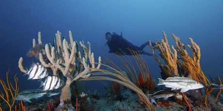 Meeting of Gray's Reef National Marine Sanctuary Advisory Council tickets