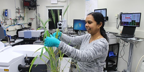 Advancements in plant and food sciences research using synchrotrons tickets