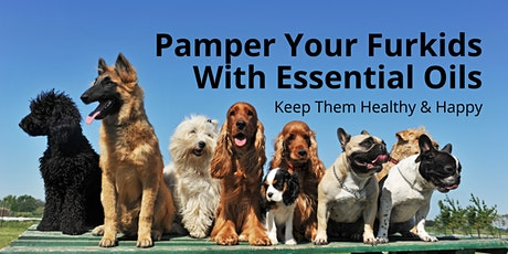 Pamper Your Furkids with Essential Oils - Keep Them Healthy & Happy tickets