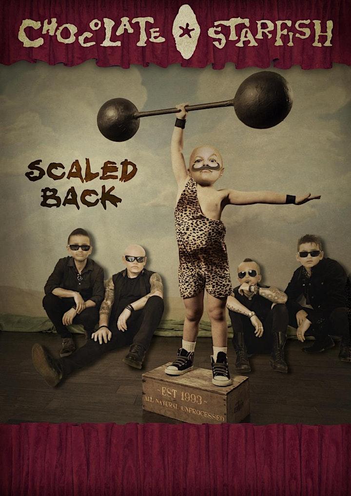 Scaled Back - Chocolate Starfish LIVE at Merchant Lane, Mornington! image
