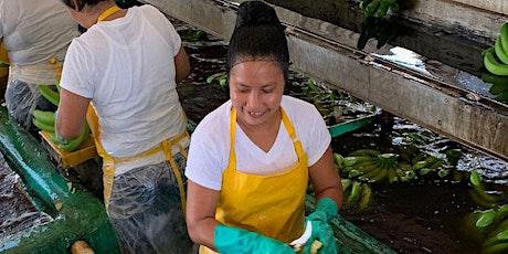 Union Difference-Banana Plantations/La Diferencia Sindical en las Fincas tickets