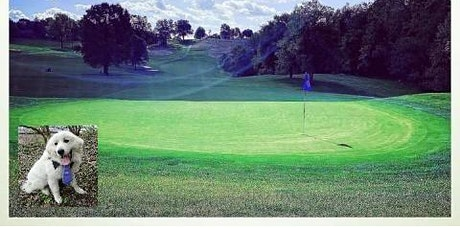 Great Pyrenees Golf Tournament tickets